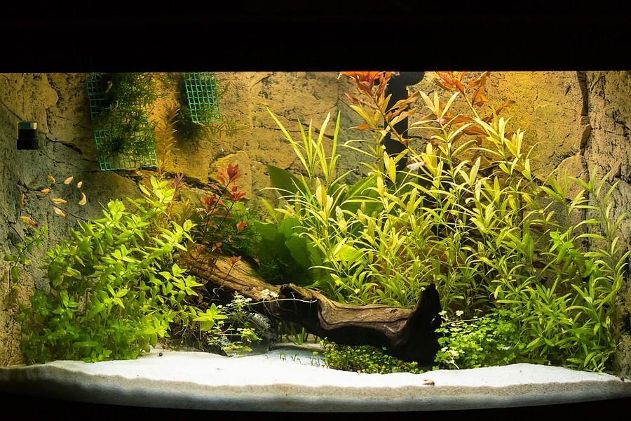 ein neues aquarium der baubericht seite 9 aquaristik forum das gro e hundeforum. Black Bedroom Furniture Sets. Home Design Ideas